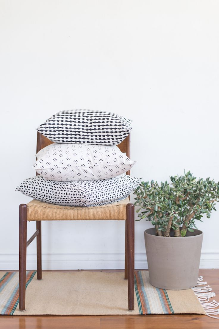Pillows, plant & a rug.