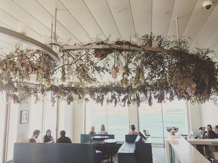 'Floating garden'  transforming over time @perrierjouet @icebergsdiningroomandbar @mauriceterzini , room with a stunning view.