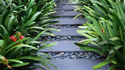 Gardening Australia - Long and Thin of It  tips for garden bed along the side of the house