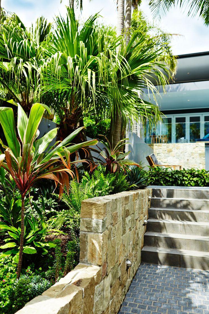 How to create a tropical garden - Best 25 Tropical Garden Design Ideas On Pinterest Small Tropical Gardens Back Garden Design And Privacy Screen Plants