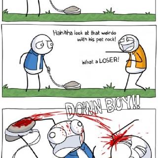 miss my pet rock!!   Quotes   Pinterest