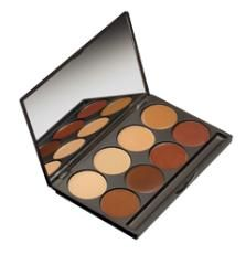 MakeUp Designory (MUD) Foundation Pallets in #4 & 5. Perfect Coverage. Also available in individual.   www.mudshop.com
