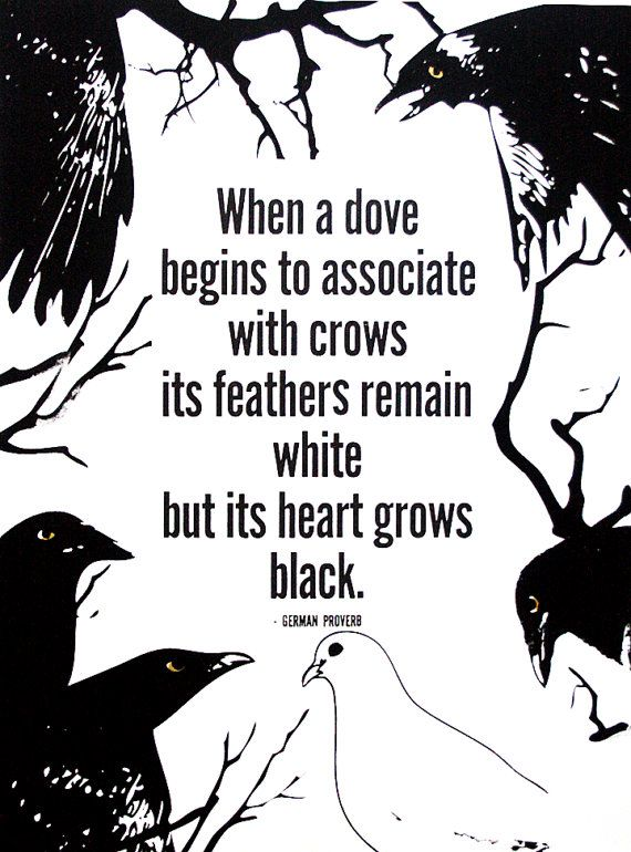 When a dove begins to associate with crows, its feathers remain white but its heart grows black.