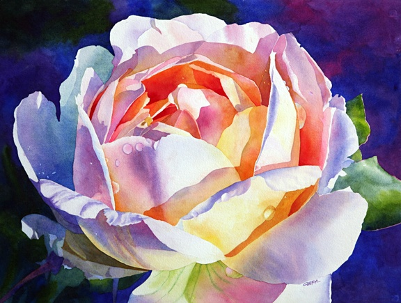 Cheryl Brajner Weinfurtner original watercolor paintings of the Desert SouthwestWeinfurtn Originals, Peace Rose, Originals Watercolors, Flower Paintings, Brajner Weinfurtn, Cheryl Brajner, Watercolors Painting, Watercolors Flower, Deserts Southwest