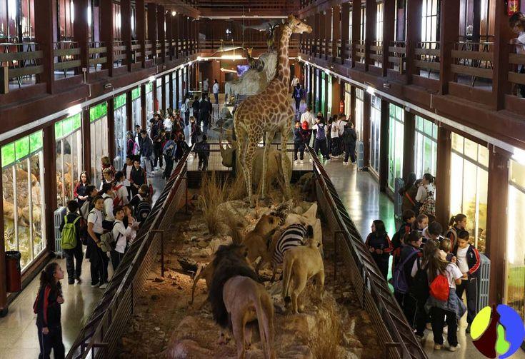 Museo de Ciencias Naturales, Madrid