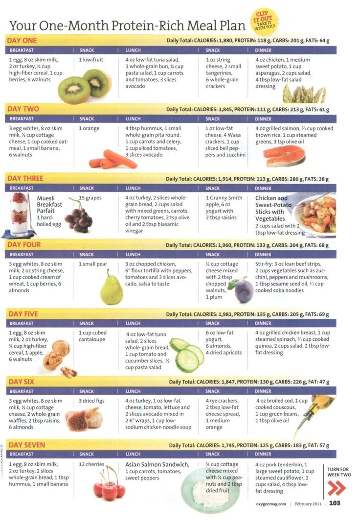 Your One-Month Protein-Rich Meal Plan - Week 1| Fitness treats