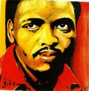 I was with my grandparents this morning and we were discussing the events in North Africa and my grandmother mentioned that Nelson Mandela had been hospitalized. My grandfather brought up Steve Biko, someone who I had never heard of, and said how he helped to inspire many young South Africans, during the apartheid period, to rise up and demand their rights to live decently and with dignity. Steve Biko was kind of the Malcolm X of South Africa