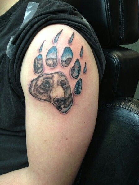 Bear paw tattoo ink pinterest bear paw tattoos for Pictures of bear paw tattoos