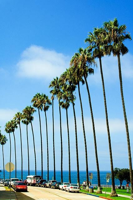 La Jolla oh how I miss you!!! Love San Diego Love La Jolla Calilove