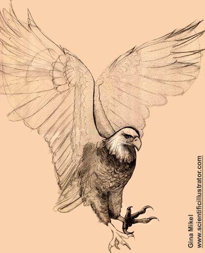 Isaiah 40 31 art tattoo Google