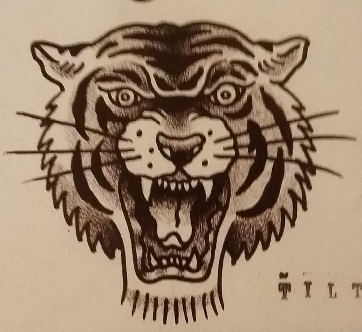 "Traditional/old school tattoo, Jeromey ""tilt"" McCulloch, tiger head"
