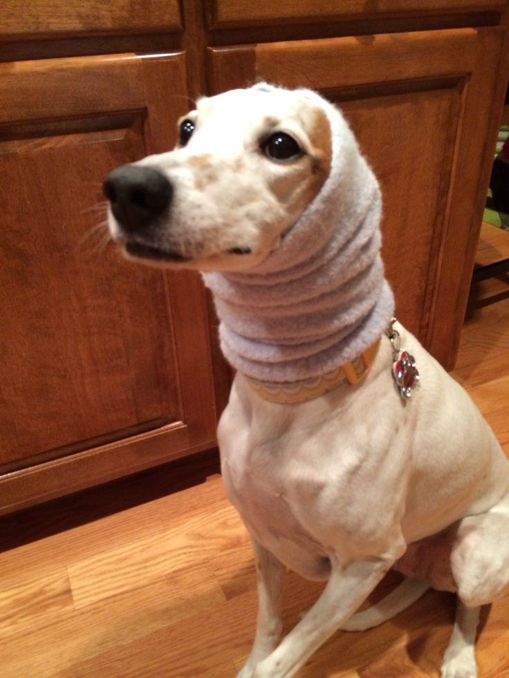 Best Fleece Sweater