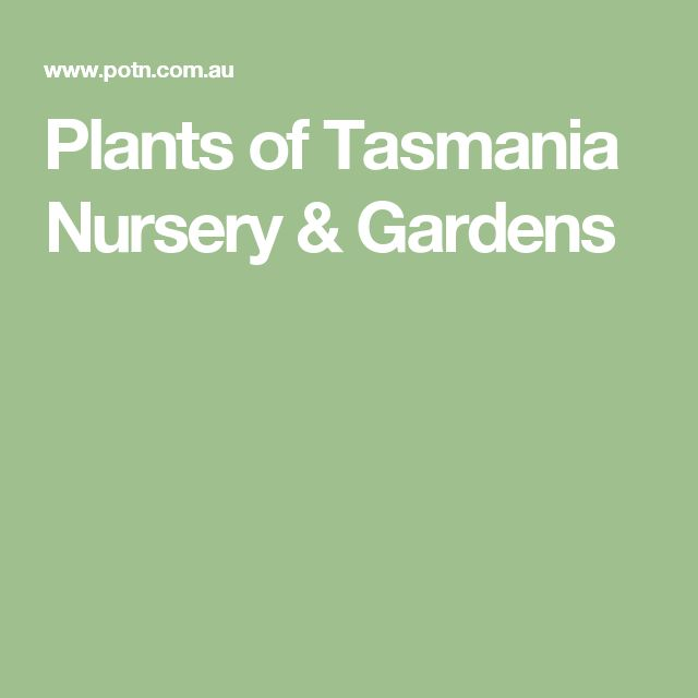 Plants of Tasmania Nursery & Gardens