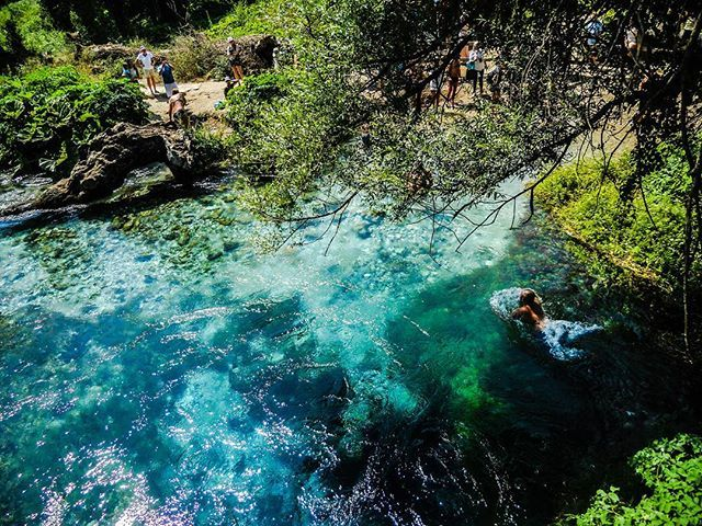 """""""The blue eye in Albania.  #travel #travelling #travelgram #travellinggram#albania #albanien #river#sea#blue#water#bluewater#blueeye#wander #wanderlust #wanderer #wandering #tourism #holiday #vacation #summer"""" by (travelliketina). travelgram #river #summer #albania #travellinggram #blueeye #wanderlust #holiday #bluewater #travelling #travel #vacation #wanderer #wandering #albanien #blue #water #tourism #sea #wander. [Follow us on Twitter at www.twitter.com/MICEFXsolutions for more...]"""