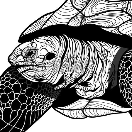 Schildpad dierenkop symbool voor mascotte of embleem ontwerp logo vector illustratie voor t shirt Sc Stockfoto