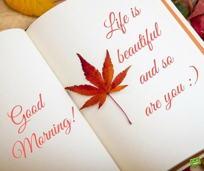 Good Morning! Life is beautiful and so are you :)