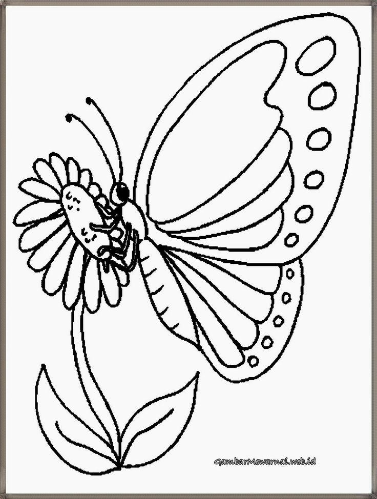 mewarnai gambar kupu-kupu