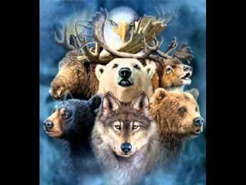 Animal Spirit Guide Meditation (playlist)