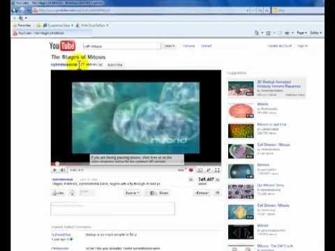Como insertar un video de Youtube en Powerpoint 2007