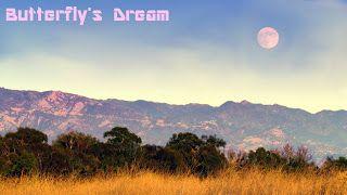 Butterfly's Dream: delta 2
