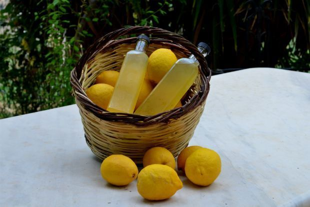 Από τις φορτωμένες λεμονιές του κήπου μαζεύουμε τους μυρωδάτους καρπούς τους, που πια είναι στην ώρα τους. Με λιγοστές φροντίδες θα ετοιμάσουμε δροσερή, μοσχομυριστή λεμονάδα.