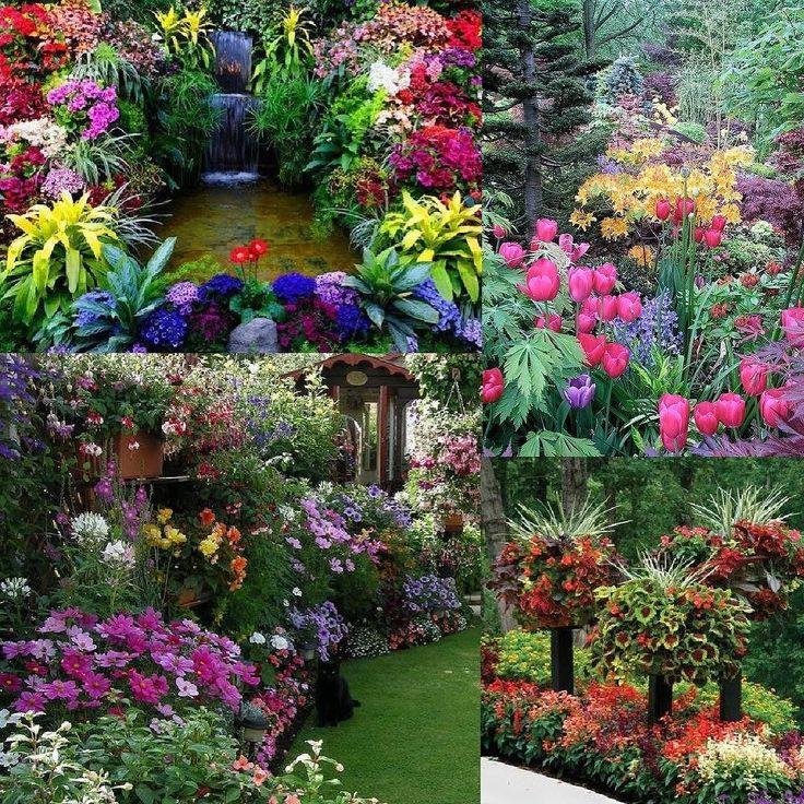 Corner garden flowery #casa #home #me #natura #natural #ambiente #naturelovers #instagramers #instagood #instadaily #instalike #instanature #instaflower #inataflowers #flowers #flower #likes #followme #photooftheday #love #green #garden #giardino #casa #home #hotel #ristorante #restaurant #archilovers #yacht @elledecor @elle_italia @homify @home_it @homeadore @gioiamagazine @grazia_it @interiordesign_architecture @internimagazine @livingcorriere @casafacile @abitarecasa @casavogue…