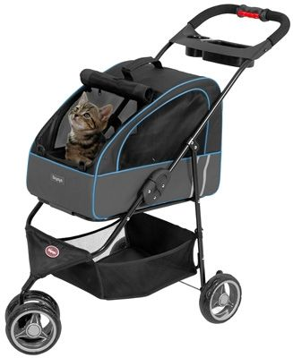 Cat Stroller - I love it and Bronx wil too!!! Great for our favorite time of year...summer!!!