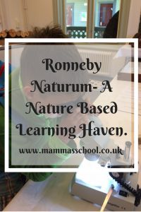 Ronneby Naturum, Ronneby Brunnspark, Nature based learning, nature, home education, www.mammasschool.co.uk