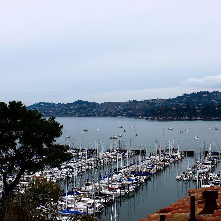 Beautiful view in Sausalito #bestpicsofsf #sausalito #alwayssf #sanfrancisco #sanfranciscoworld #loves_sanfrancisco #icu_usa #theamericancollective #saltlife #sailing #sailboat #loves_water #exclusive_water #rsa_water by corinnegf