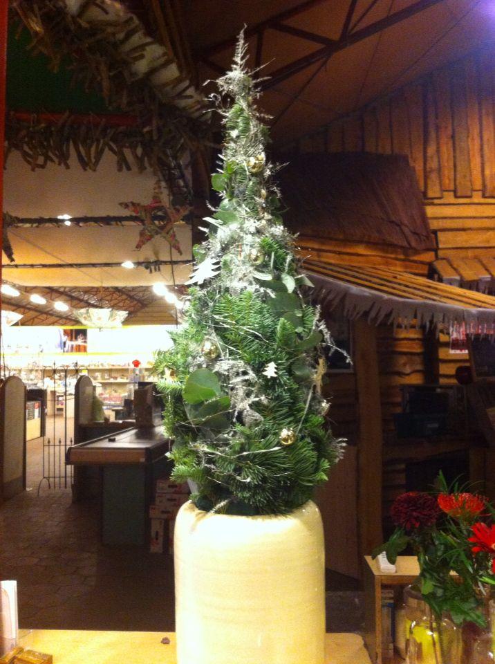Kerstboompje eucalyptus, blauwe zilver spar, asparagus 2