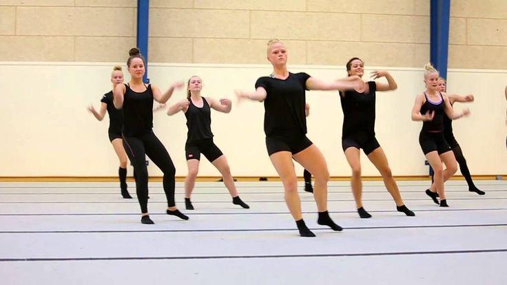 Danish national TeamGym team