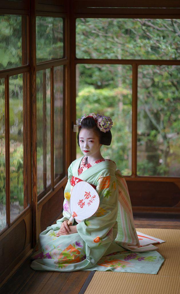 maiko 舞妓 Pontocho 先斗町 Ichuyu 市結 KYOTO JAPAN