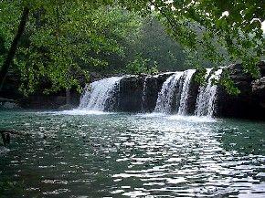 Arkansas's Ozark National Forest
