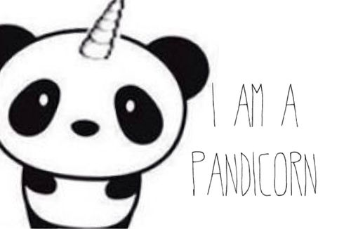 Pandicorn Cute Things Kawaii Drawings Cute Panda