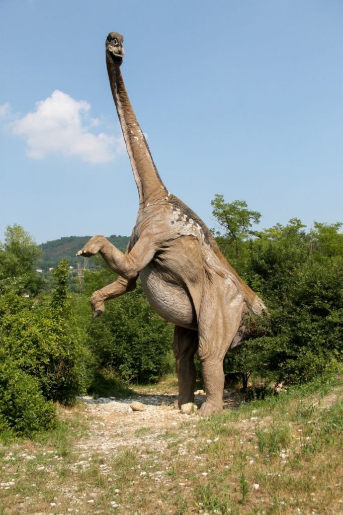 Dinosauri a grandezza naturale al Museo Cava Bomba.  #ColliEuganei #Padova #Italy