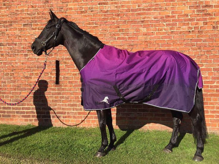 Neue Farben der Avante leichten Paddockdecke 😍😍😍 #Lila #Purple #Purpur #ombre #Farbverlauf #Farbeverlauf #dipdye #dye #neu #new #SS17 #Sommerdecke #Outdoordecke #Paddockdecke #Regendecke