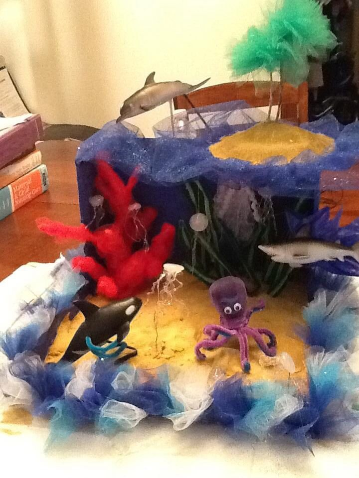 39 best diaromas images on pinterest ocean diorama school 2nd grade ocean diorama jellyfish made from hot glue and coral made from pipe cleaners school projectsscience sciox Images