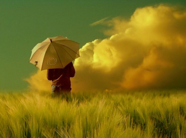 lygoslogic.com: Umbrellas, Natural Photography, Walks, Inspiration, Quotes, Wait Forever, Cloud, Veronika Pink, Fields