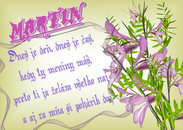 Martin Dnes je deň, dnes je čas, kedy ty meniny máš, preto ti ja želám všetko naj a aj za mňa si pohárik daj