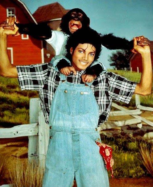 Cartas a Michael: El amor a los animales