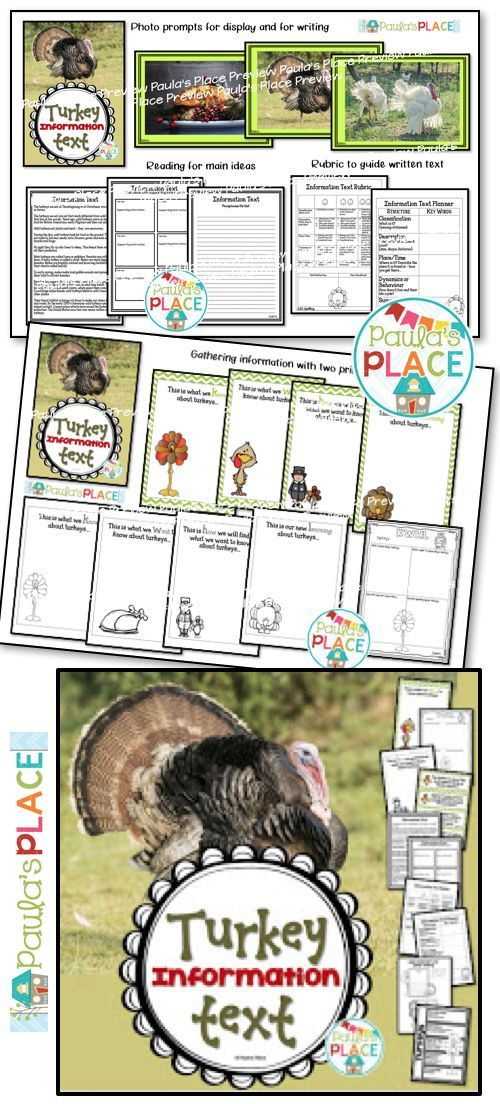 This Turkey Informational Text pack provides information and a rubric to guide your students to write about turkeys.