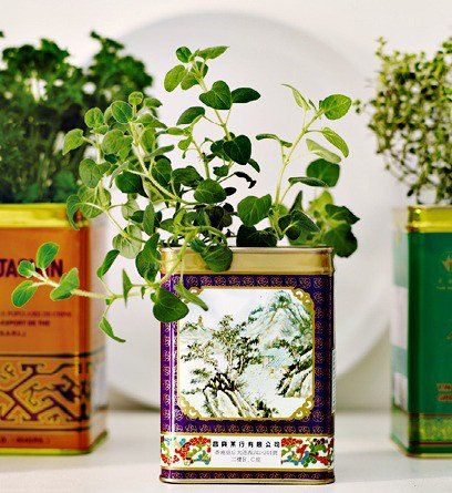 Windowsill Gardening On The Cheap: Vintage Style Tin Herb Gardens