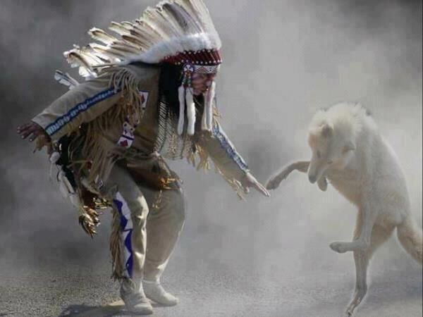 Dancing with the Wolf Spirit. ~ Stay at Hummingbird Ranch Vacation House $129 Nightly w/ 3 nt min, $595~$695 WK, $2250 ~ $2450 Month. Southeastern Arizona At 4700 elevation, we have 360 mountain views to enjoy your hiking, biking and exploring the 3 Ghost Towns 10 mins away from the Ranch. 2 National Parks can be seen in the distance from the Ranch. Both were home to 2 famous Chiefs~ Cochise & Geronimo. http://vacationhomerentals.com/68121 Video~ https://www.youtube.com/watch?v=WpapgXh7Av0