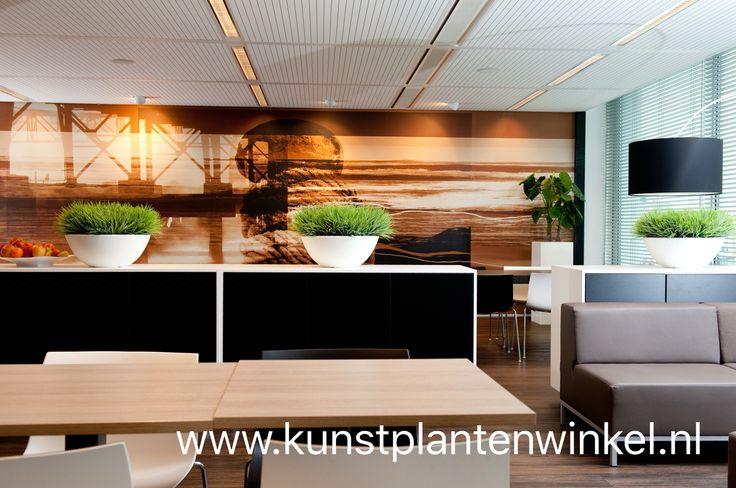 Strakke #kunstplanten in moderne #plantenbakken