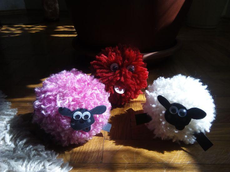 Ovečky a červeňák