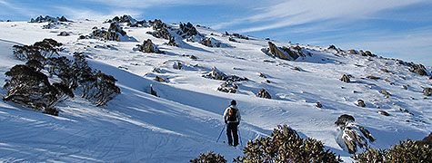Winter in Australia -  Here you can catch some powder and with the days being shorter, colder and darker.