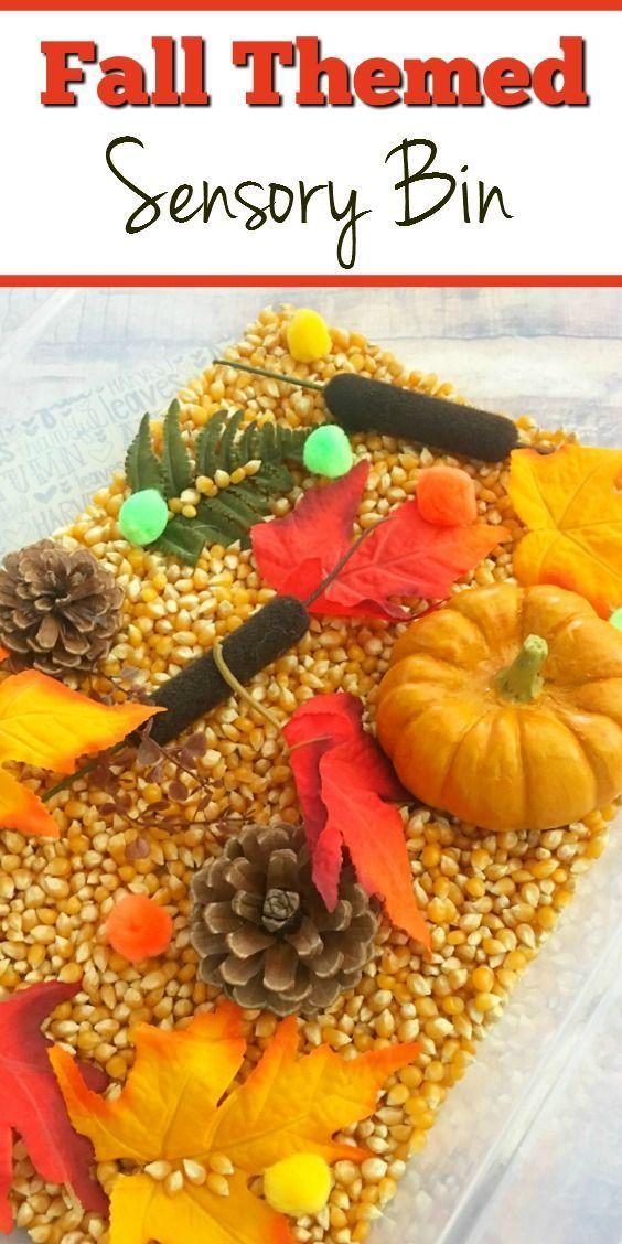 Fall Sensory Bin! This sensory bin is great for fine motor skills and visual…