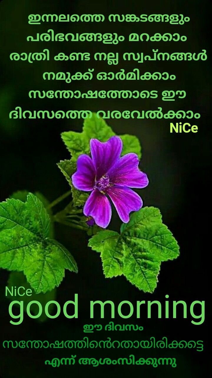 Malayalam Images Of Good Morning