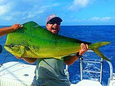 Puerto Vallarta Fishing - Dolphin Fish www.vallartavisit...