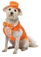 Dumb & Dumber Lloyd Tux Dog Costume